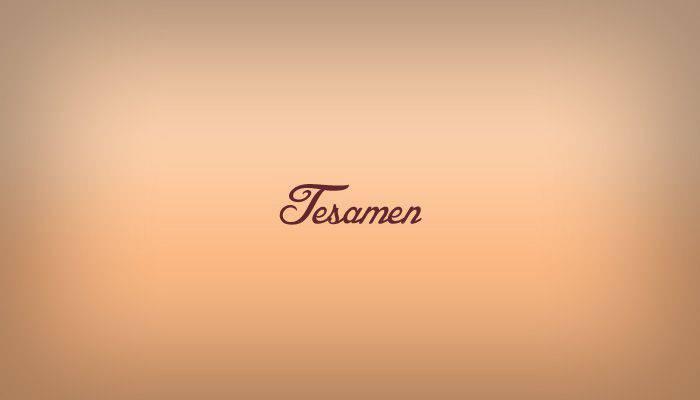 Tesamen logo