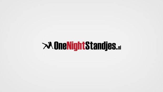 OneNightStandjes.nl logo