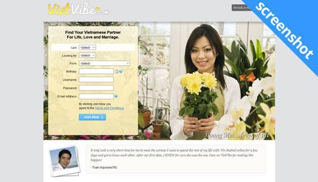 VietVibe.com screenshot