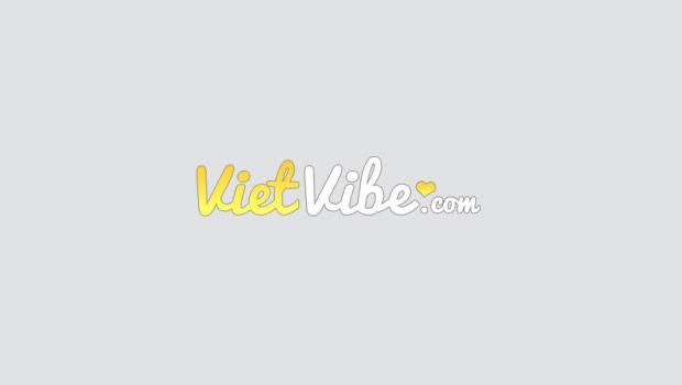 VietVibe.com logo