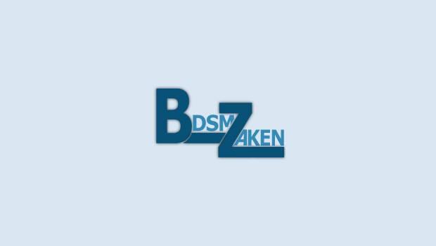 BDSMzaken logo