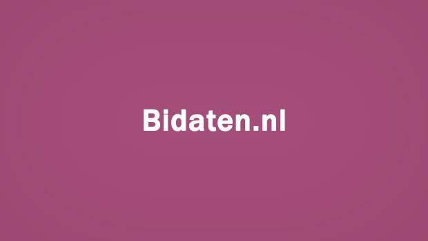 Bidaten.nl logo