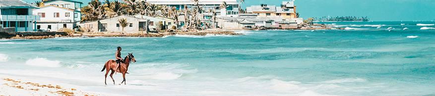 caribisch